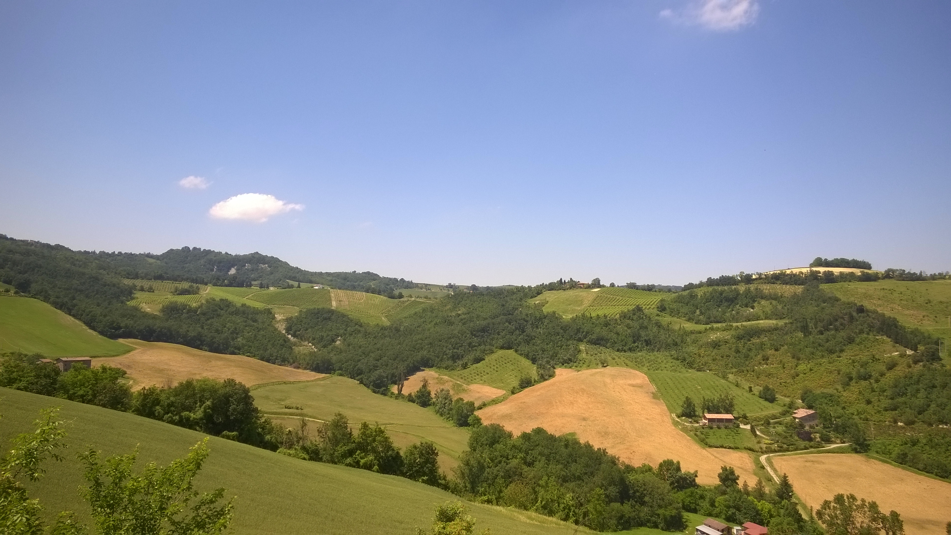 agricoltura-collina